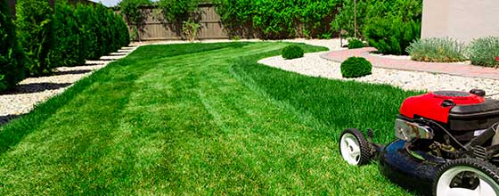 Lawn Care Services in St. Mary's County MD: Beautify your lawn today!