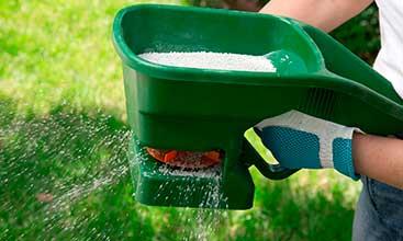 Lawn Fertilized
