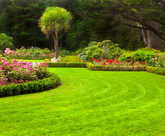 We offer the best Lawn Care Services in St. Mary's County MD